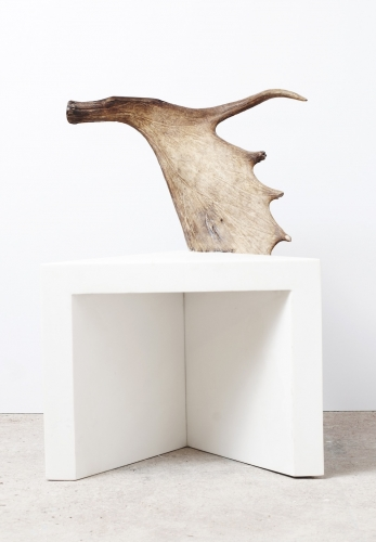 Stag_Stool_1_RO_42_347_500