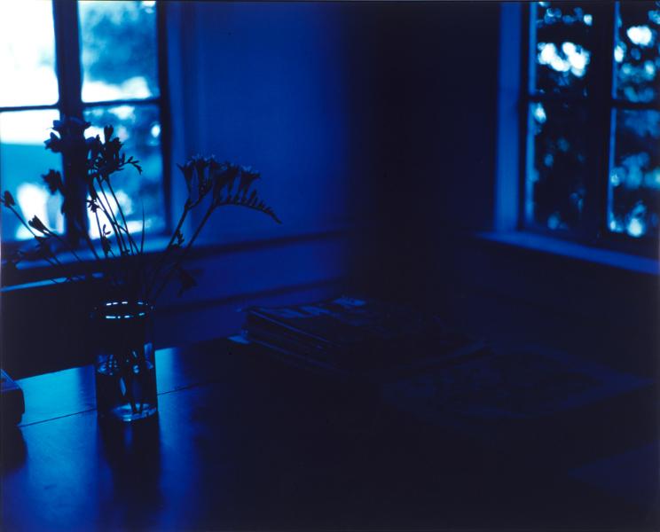 untitled-fresia-1998